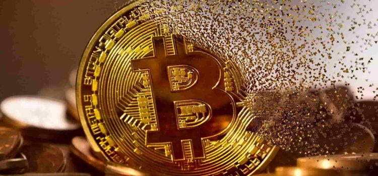 Amid constant fall, Bitcoin's regains trading dominance over Altcoins