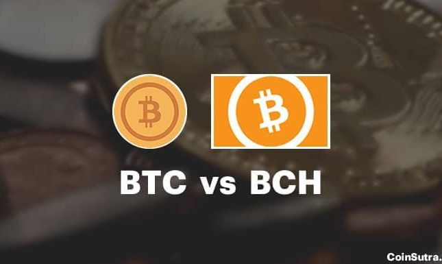 Bitcoin Currency [BCH] vs. Bitcoin [BTC]: Studies claim BCH in no way excavated its special 8MB block