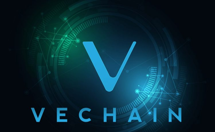 VeChain Staking Guide
